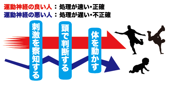 figure_06